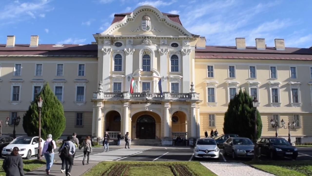 Szent István University